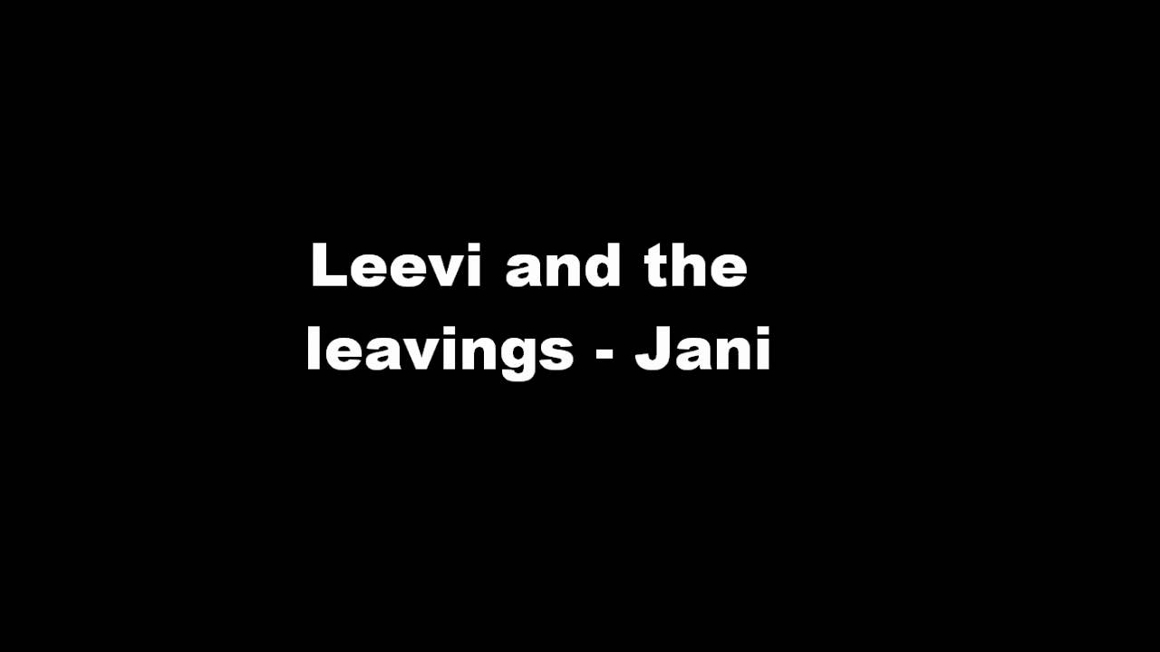 leevi-and-the-leavings-jani-musicexpress2011