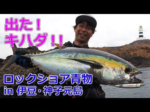 ロックショア青物ゲーム in 伊豆・神子元島
