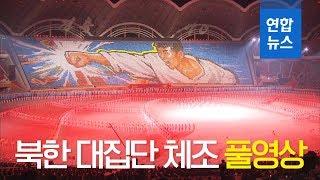 [풀영상] 남북 정상이 함께 관람한 북한