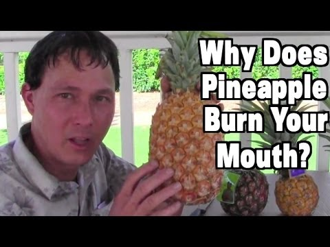 3 Ways to End Pineapple Mouth Burn Forever