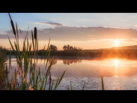 """Peaceful Music, Relaxing Music, Instrumental Music """"Angels of Light"""" by Tim Janis"""