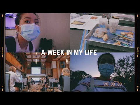 a week in my life at college