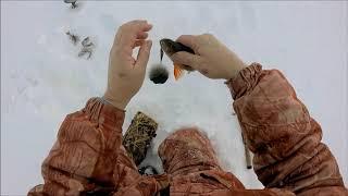 Рыбалка на оз  Кетлимлор Сургутский р он