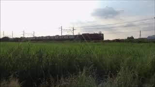 武蔵野線 E231系AT出場配給輸送 【東浦和】