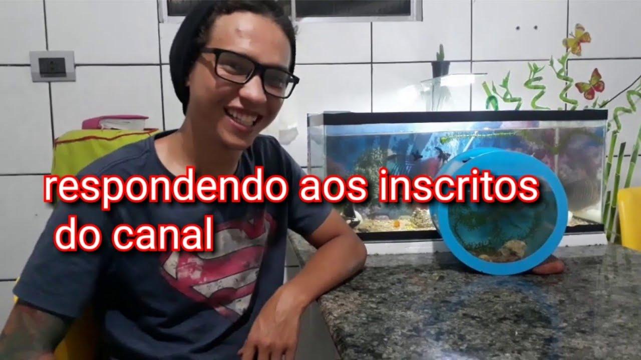 RESPONDENDO DÚVIDAS SOBRE BETTAS - Davi aquarismo