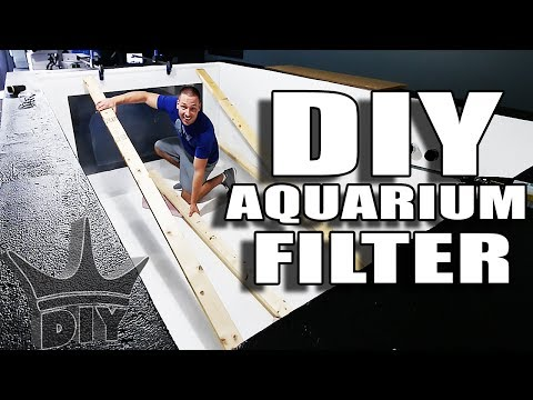 LIVE 2,000 gallon filtration and aquarium viewing panel work!