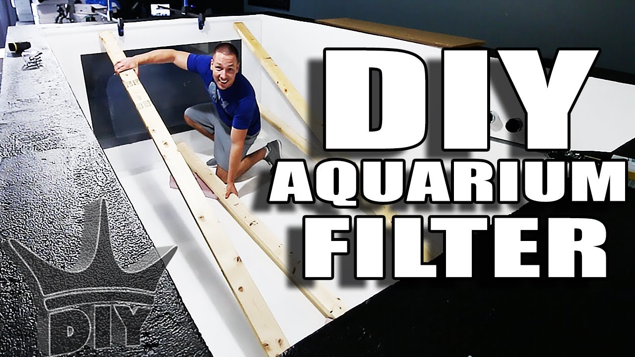 live-2-000-gallon-filtration-and-aquarium-viewing-panel-work