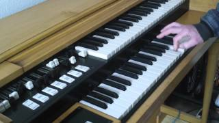 HAMMOND ORGAN CHOPPED w/ DUAL FOLDBACK M3