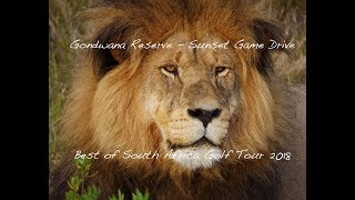 Best of South Africa Golf Tour 2018 - Gondwana Reserve Sunset Game Drive