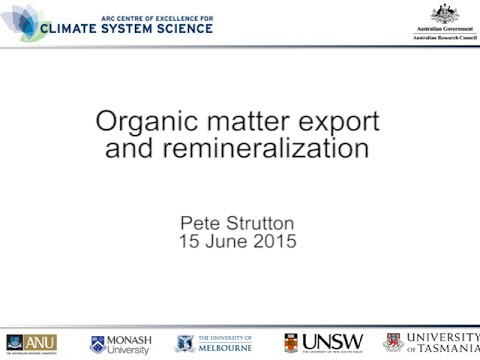 Organic matter export and remineralization (Pete Strutton)