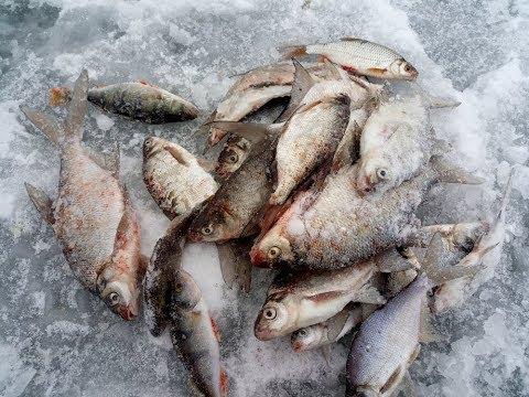 Рыбалка зимняя на яуза