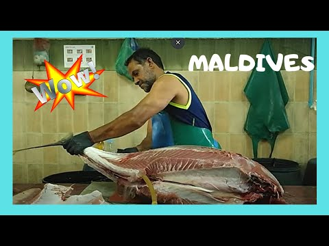 Cleaning A 50Kg Tuna At The Fish Market 🐟🐟 In Malé, The Maldives