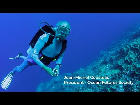 Experience the World's Most Stunning Environments with Jean-Michel Cousteau