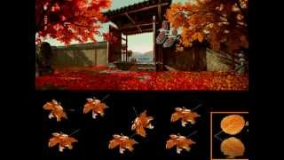 Chiếc lá mùa thu -  Thi sĩ khiếm thị: Vũ Thủy