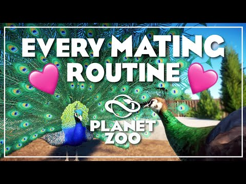 Every animal mating routine in Planet Zoo |