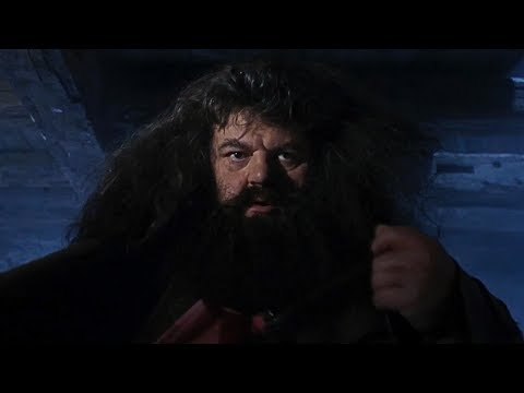 A Visit From Rubeus Hagrid | Harry Potter And The Philosopher's Stone