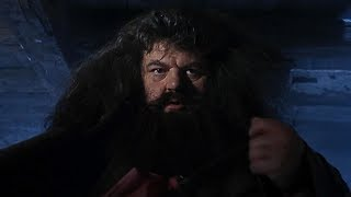A visit from Rubeus Hagrid | Harry Potter and the Philosopher