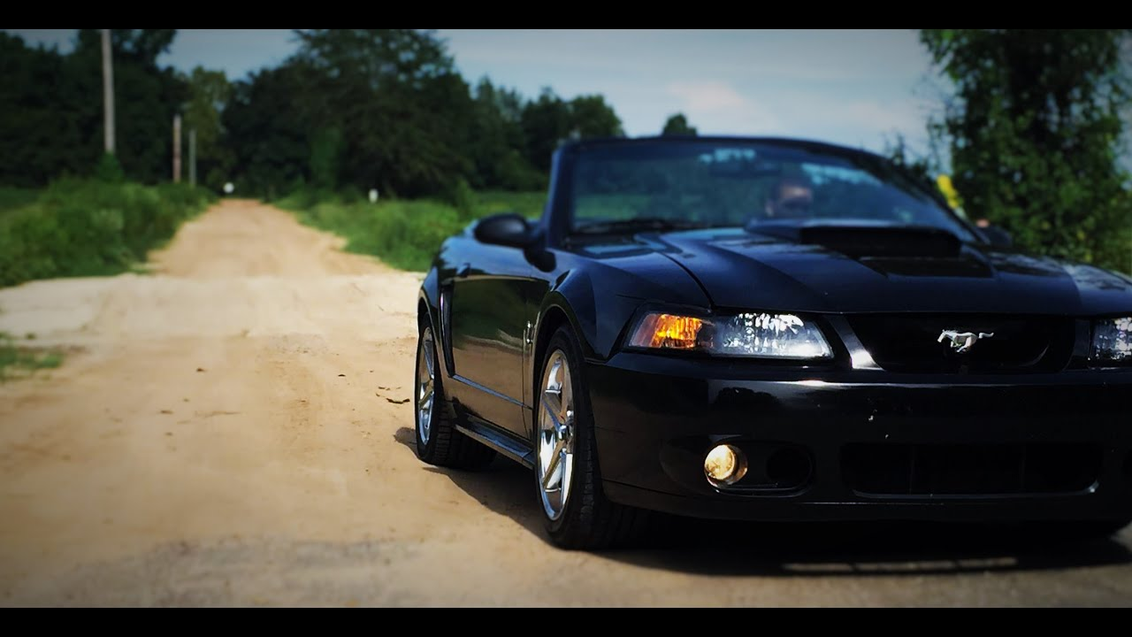 1999 mustang svt cobra ford 39 s biggest svt flop that led. Black Bedroom Furniture Sets. Home Design Ideas