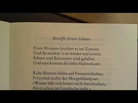 Drei Beweise warum Gedichte inspirieren | «Steiner & Tingler» | SRF Kultur from YouTube · Duration:  3 minutes 8 seconds