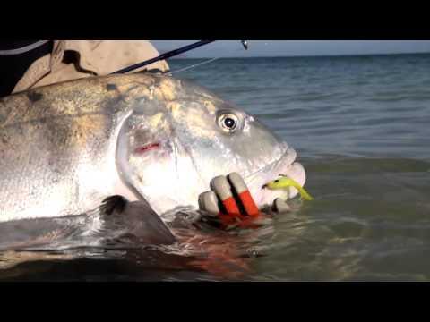 Fly Fishing for Bonefish New Caledonia