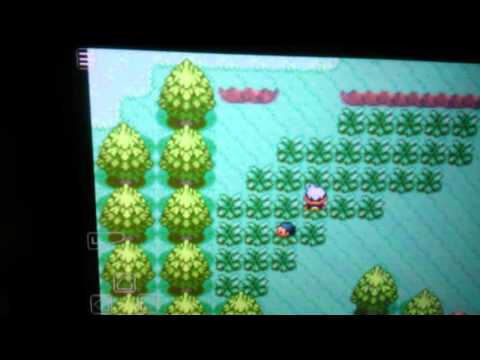 Pokemon Sapphire how to get surskit and ralts