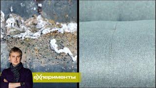 Большая чистка. Фильм 2 | ЕХперименты с Антоном Войцеховским