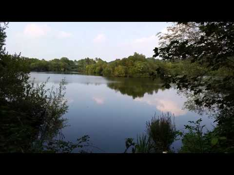 Carp Fishing A Low Stocked Pit