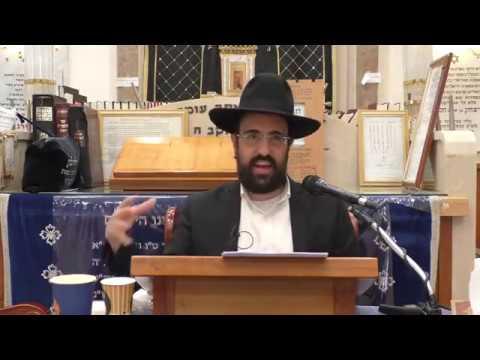 """הרב מאיר אליהו שליטא   ביאת משיח   בהעלותך תשע""""ט"""