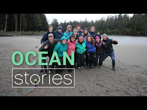 Vidéo: L'expérience Portail Océan