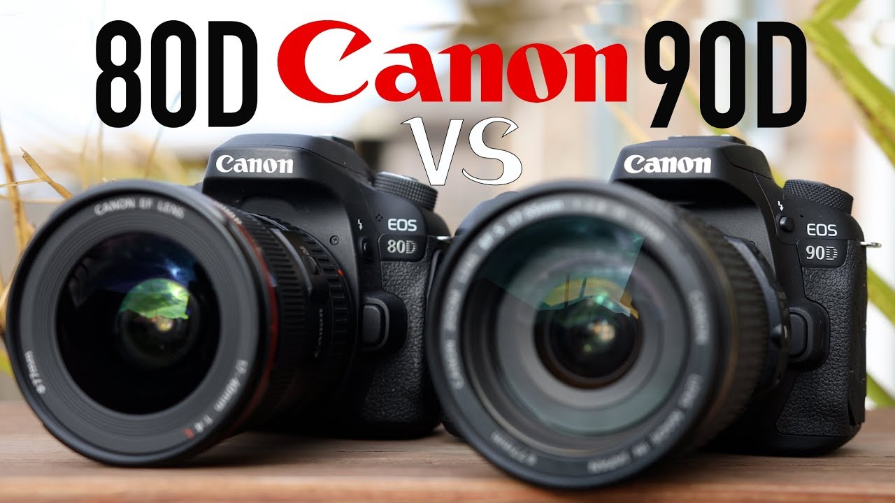 Canon 80D vs 90D (Is It Worth The Upgrade?)