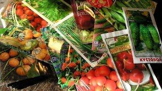 Сколько семян покупать на будущий год  Сюрприз для подписчиков!