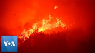 Wildfires Threaten Sequoia National Park