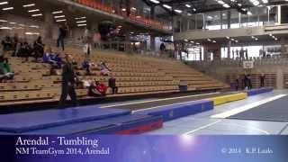 NM TeamGym 2014 - Arendal - Tumbling