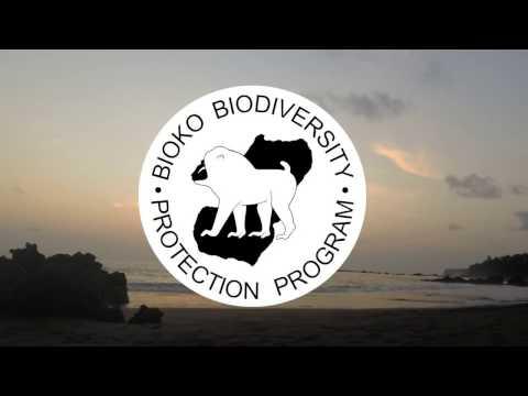 Drexel Study Abroad on Bioko Island