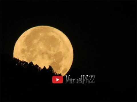 Tonto de tanto (r'n'r) - Rubén Pozo (Cover ManuelRA22)