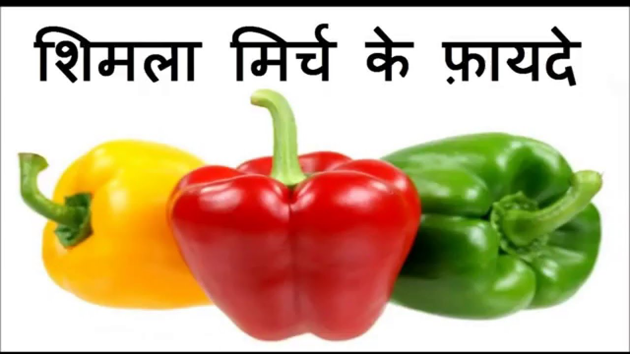20 Amazing Benefits Of CapsicumBell Peppers (Shimla Mirch) For Skin, Hair And Health photo