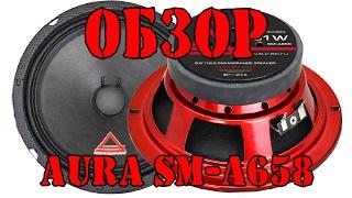 Обзор динамиков Aura SM A658