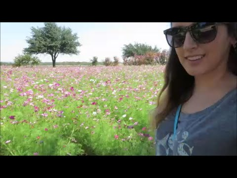 TRAVEL VLOG- Fredericksburg, Texas Day 3