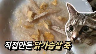 직접만든 고양이간식, 닭가슴살 죽!