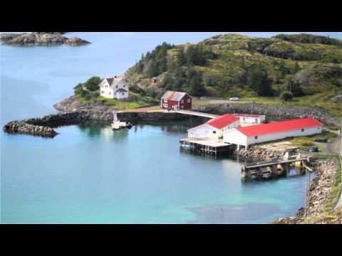 Arctic Sunrise - Direct Dialogue winners