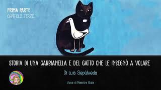 CAPITOLO 3 - Storia di una gabbianella e del gatto che le insegnò a volare - Luis Sepùlveda