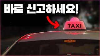 택시기사만 알고 있는 빨간 갓등의 숨겨진 의미 ( 의외…