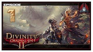 видео Divinity: Original Sin 2
