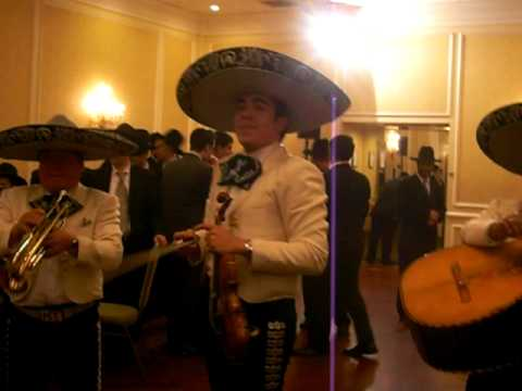 you never say this at a jewish wedding the mexico band