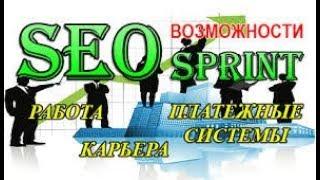 1 Як заробляти на сеоспринт 20000 рублів за 1 м. інструкція тотального заробітку і реєстрації.