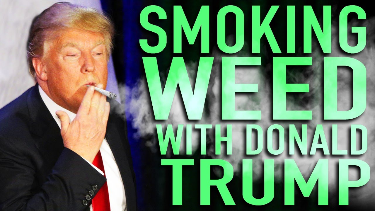 Image result for smoke weed with donald trump
