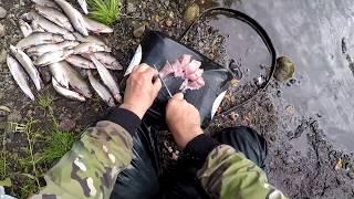 Дикая Речка-четкий клев, Рыбалка на ХАРИУСА-делаю обалденный  ЗАКУСОН  со свежака!!!