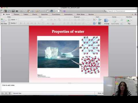 lecture Environmental Systems