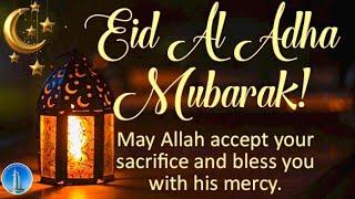 Eid ul Adha Mubarak 2021   Eid Whatsapp Status   Eid Mubarak 2021   Eid Wishes 2