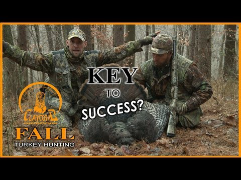 What Is The Key To Success In The Fall Turkey Woods?